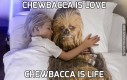 Chewbacca is love
