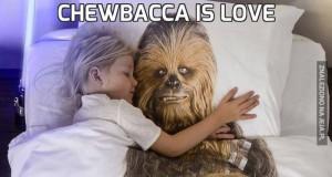 Chewbacca is love