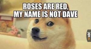 Piesełowa poezja