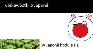 Ciekawostki o Japonii