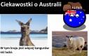Ciekawostki o Australii