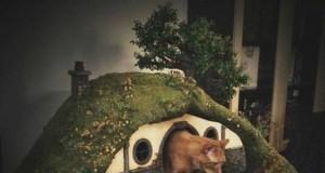 Frodo ma swoją własną hobbicią norkę i wieżę Saurona