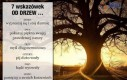 7 wskazówek od drzew