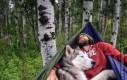 Epicka przygoda człowieka i psa