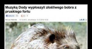 Dodą wypłoszyli bobra...