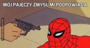 Mój pajęczy zmysł mi podpowiada