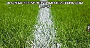 Dlaczego podczas meczu Jamajki z Etiopią znika trawa?