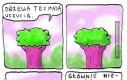 Drzewa też mają uczucia