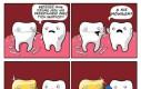 Zazdrosny ząb