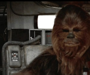 Deal with Chewbacca