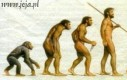 Ewolucja mężczyzny