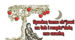 Newton i jabłko