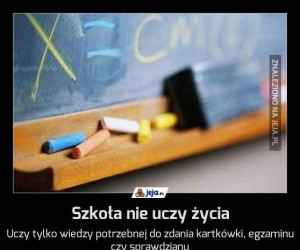 Szkoła nie uczy życia