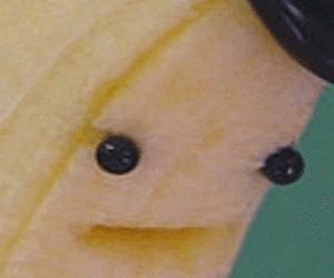 Kiedy z głodu zjesz banana razem z czarną końcówką