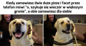 No co? Lubię pizzę