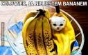 Człowiek, ja nie jestem bananem