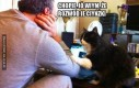 Śląski koteł