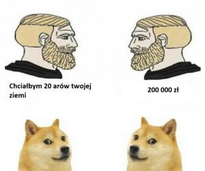 Psie zasady