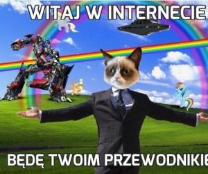 Witaj w internecie