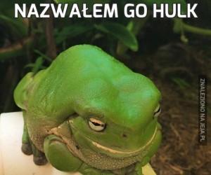 Nazwałem go Hulk