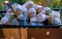 Trzeba sprawdzić w Starbucksie