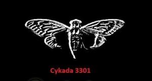 Cykada 3301