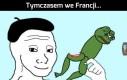 Śpieszmy się kochać żaby...