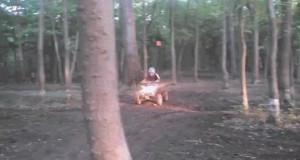 Powalę to drzewo!