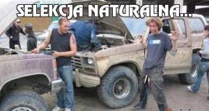 Selekcja naturalna...