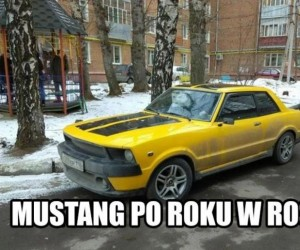 Mustang, czy to Ty?
