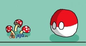 Polandball i grzybki