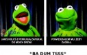 Kermit zawsze wie co powiedzieć