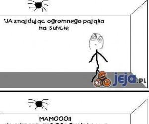 Jak zabić ogromnego pająka?