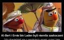 Al-Bert i Ernie bin Laden byli niemile zaskoczeni