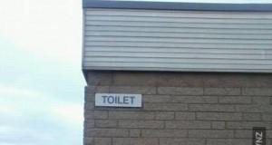 Nietypowa toaleta