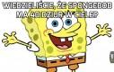 Wiedzieliście, że Spongebob ma 40 dziur w ciele?