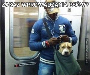 Zakaz wprowadzania psów?