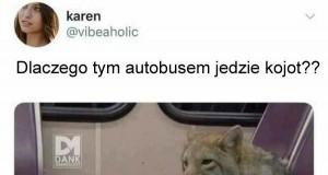 Dorośnij, Karen