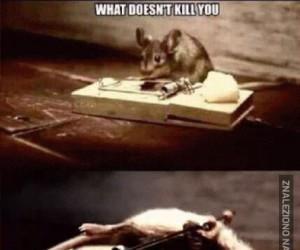 Co Cię nie zabije...