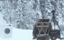 Niedźwiedź znajduje pralkę