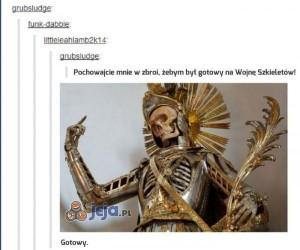 Zbroja dla szkieletu