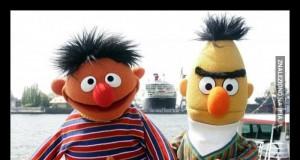 Ernie czekał, aż przypłynie jego kumpel islamista