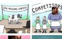 Konkurs dojenia