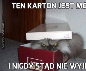 Ten karton jest mój