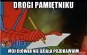 Pamiętnik Spidermana