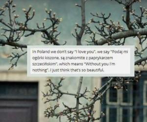 Język polski taki piękny