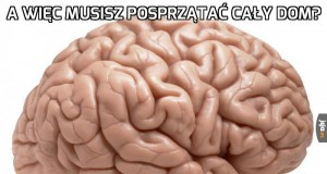 Mózgu, zlituj się...