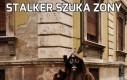 Stalker szuka zony