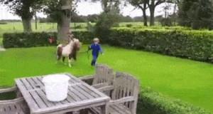 Chodź, mały, skaczemy!