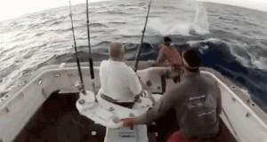 Wypad z łodzi, kmioty